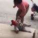 Madre patea a su hija para que deje de llorar (VIDEO)