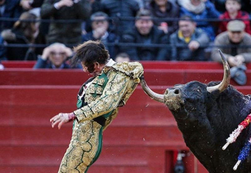 Juan José Padilla recibe escalofriantes cornadas