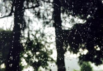 Lista de cosas buenas que tienen los días de lluvia