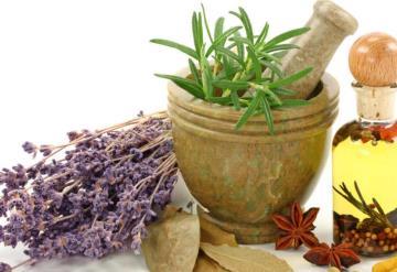 Tabasqueños prefieren plantas medicinales que fármacos