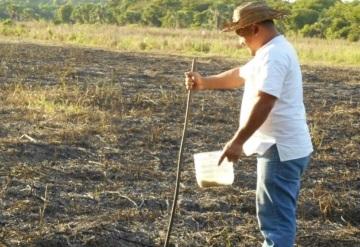 Falta de lluvias afectan al campo tabasqueño