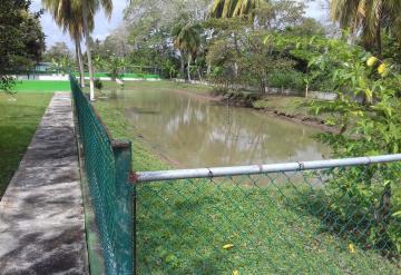 Delincuentes saquean la granja de tortugas (UMA) de Nacajuca