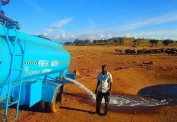 Hombre lleva agua a animales sedientos en África