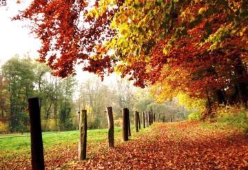 ¿Sabías que nosotros celebramos el equinoccio de primavera y en el sur el de otoño?