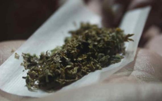 Consumo excesivo de marihuana afecta al cerebelo: UNAM