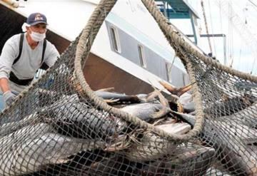 México gana disputa sobre etiquetado de atún, podría sancionar a E.U.