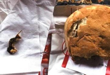 Mujer encuentra rata incrustada en sándwich