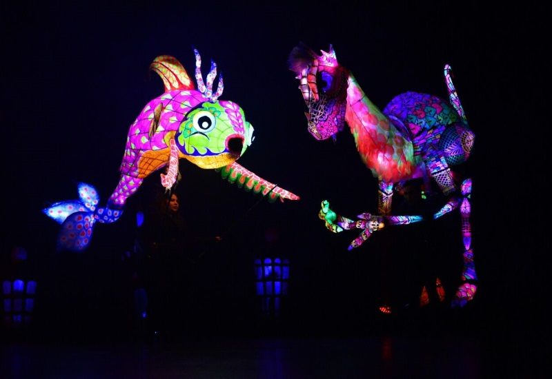 Color y magia en ´La fiesta de Colorícuaro´ en el Esperanza Iris