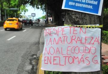 """Gerardo Gaudiano: """"No se talará en Paseo Tabasco"""""""