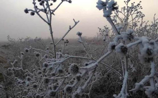 Tlaxcala, un postal blanco de invierno