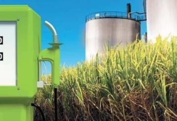 El etanol en México: lo que tienes que saber sobre este combustible