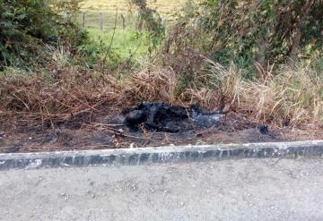Descubren cuerpo calcinado a orillas de la carretera