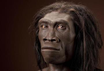 Este antepasado nuestro se extinguió por perezoso