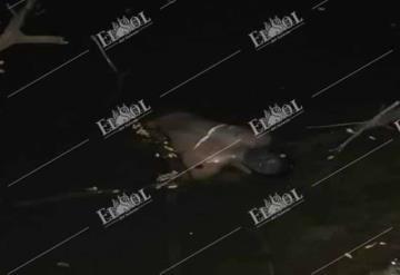 Encuentran el cadáver de un hombre flotando en Río de la comunidad Sabanalarga