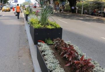 Quitarán jardineras de Paseo Tabasco