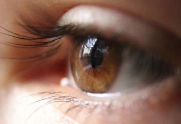 Científicos descubren que la ceguera puede ser reversible