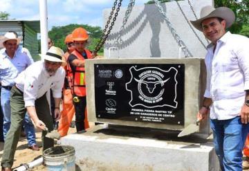 Rastro en Centro procesará 100 reses por turno
