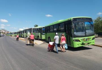 Choferes del Transbus paran labores por falta de pago