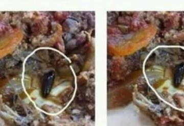 ¡Qué Asco! Sirven comida con gusanos y cucarachas en una Universidad