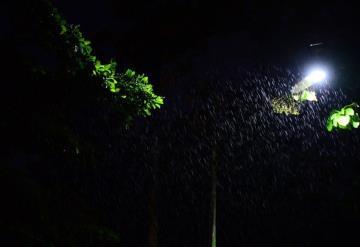 Vienen 48 horas de lluvias: CONAGUA
