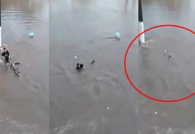 Ciclista muere en inundación por negarse a soltar su bici