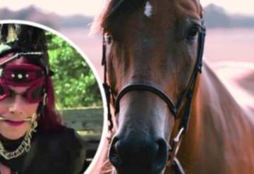 Pasó de hombre a mujer; hoy busca convertirse en caballo