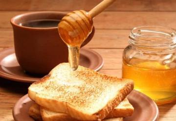 Todo listo para el Primer Festival de la Miel en Tabasco, entérate de todos los detalles