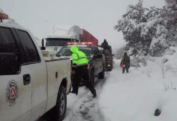Sonora pide declarar emergencia por heladas