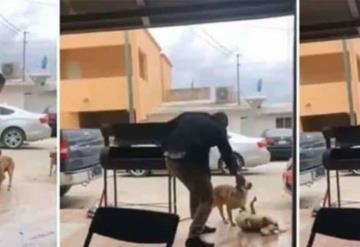 Hasta 6 años de cárcel a quien apuñaló a perrito en Piedras Negras
