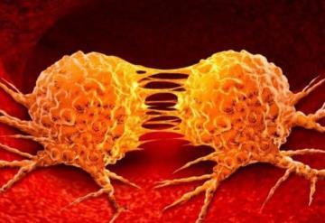 Descubren sustancia que evita la metástasis del cáncer