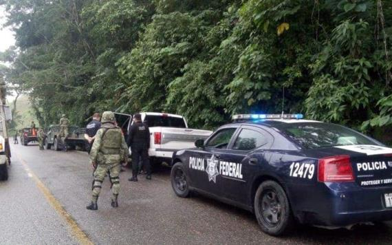 Ejército da duro golpe al abigeato en Cárdenas