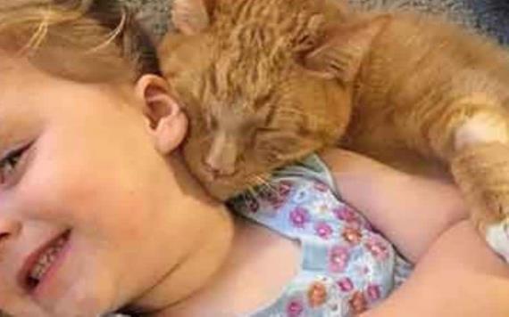 Hasta el último instante esta niña le cantó a su gatito para que muriera en paz