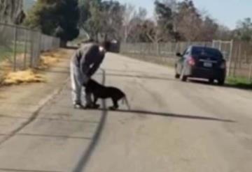 VIDEO:  Hombre abandona a su perro en medio de la carretera