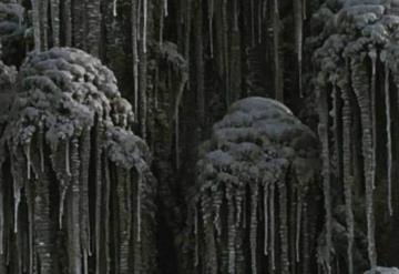 ¡De Miedo! Cae nieve negra y tóxica en Rusia