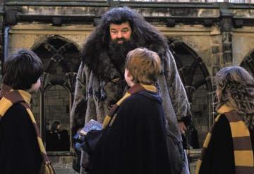 Hagrid de Harry Potter padece enfermedad que lo deja en silla de ruedas