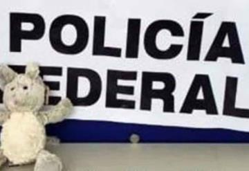 Descubren ratón de peluche relleno de fentanilo en Tijuana