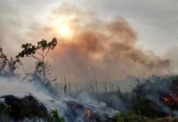 50 incendios de pastizales se registran en Tabasco