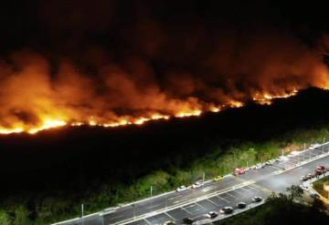 Incendio arrasa con manglar en Campeche
