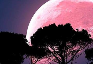 Este Viernes Santo el cielo se iluminará con la luna rosa