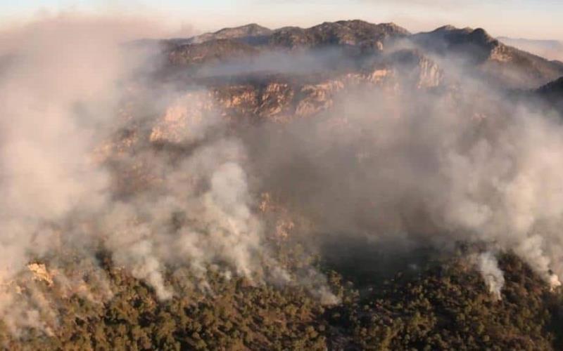 Incendio consume Sierra de San Miguelito en San Luis Potosí