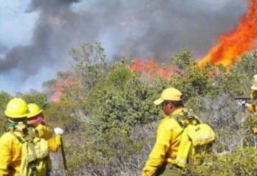 Declaran emergencia en Oaxaca por incendios forestales