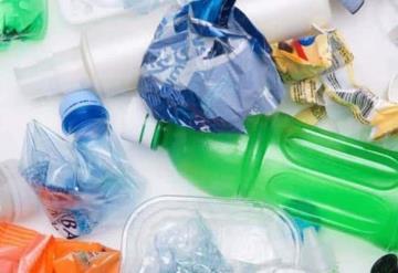 Los plásticos biodegradables también son tóxicos