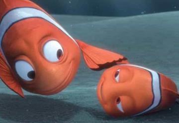 Expertos descubren que luz artificial está afectando en su reproducción al pez payaso