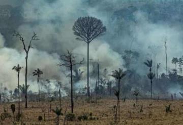 El Papa reza para que el incendio de la Amazonía sea controlado lo más rápido posible