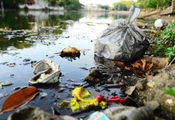 Microalga y basura  acaban con ríos y lagunas en Tabasco