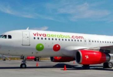 Viva Aerobús baja de avión a pareja con perro de soporte