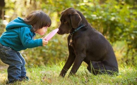 Los perros son buenos para la salud de tus hijos