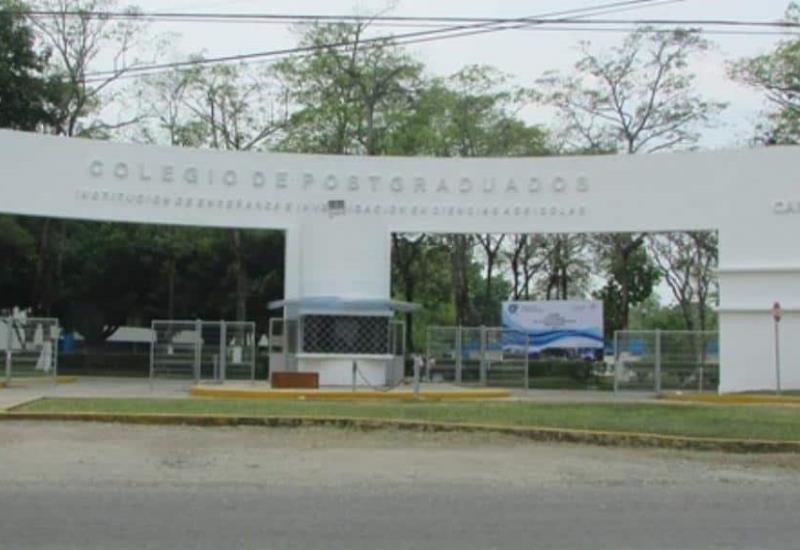 Detienen a 12 por despojo en Colegio Postgraduados en Tabasco