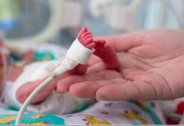 Un útero artificial podría ser la esperanza para bebés prematuros