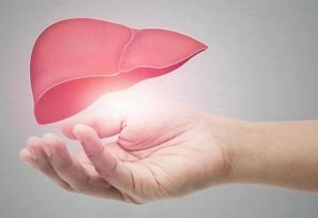 ¡Cuida tu hígado! Estos alimentos podrían dañarlo y aumentar el riesgo de cirrosis